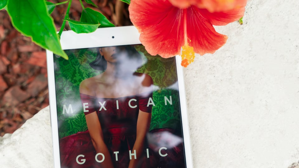 The White Fragility Controversy, Mexican Gothic, and Everything Else I Read in June