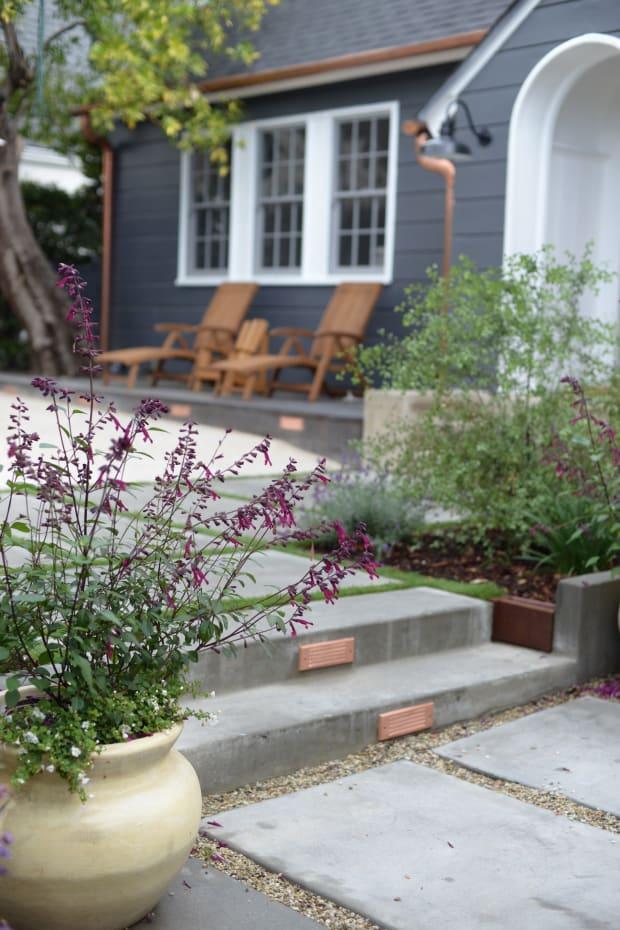 front steps + plant.jpg