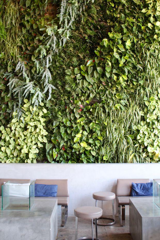 Live Wall at American Tea Room.jpg
