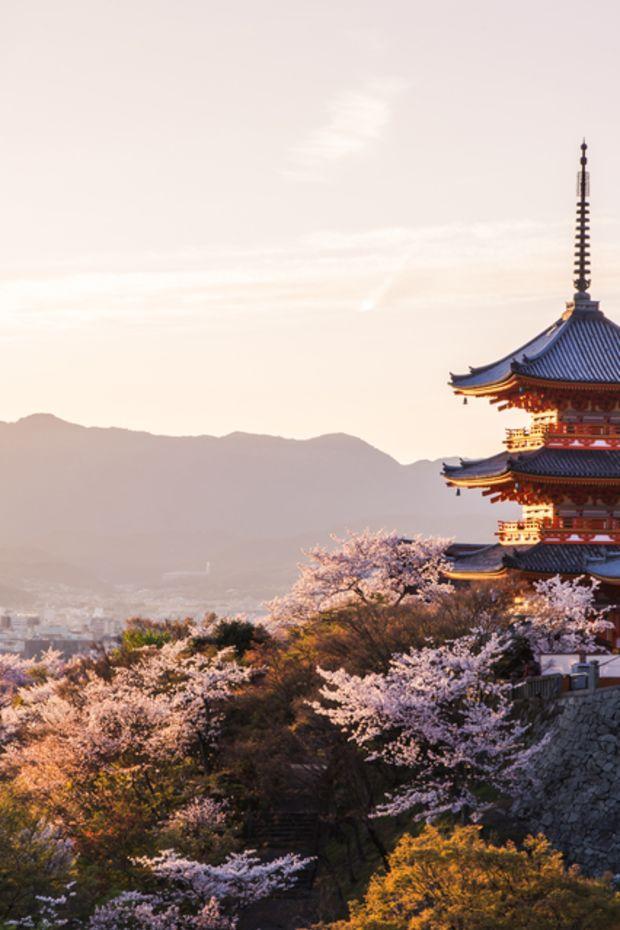 L2F-Sep-16-pic-Japan-Kyoto-Kiyomizu-dera-temple-cherry-blossoms-thipjang-shutterstock_403209976