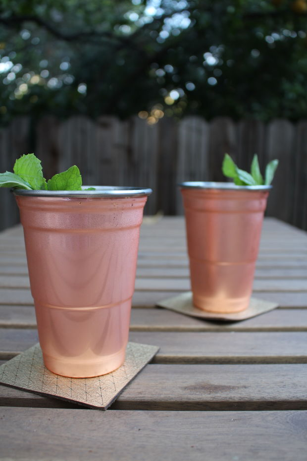 Copper Solo Cups FOTW1.JPG