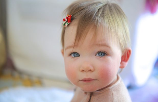 Sloanie at 11 months old