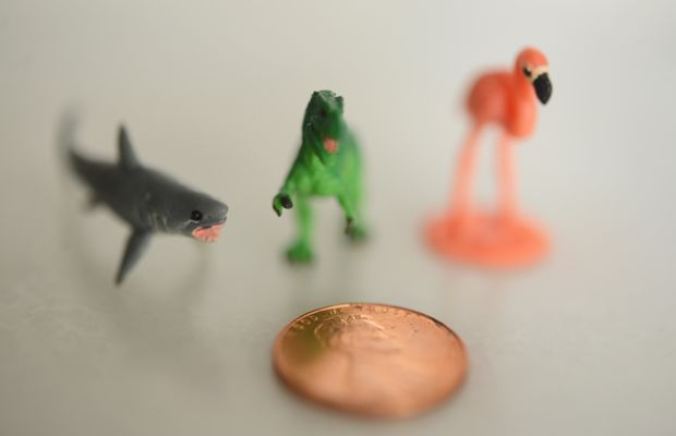 {Miniature animals I picked up for a future art project}