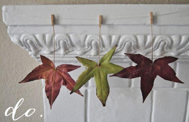 leaves1_0