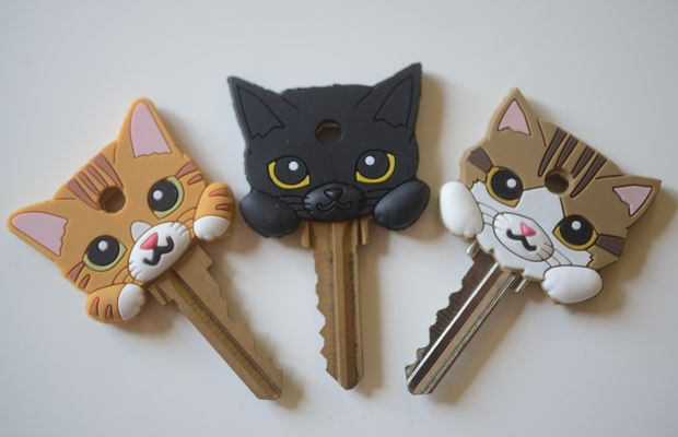 catkeys