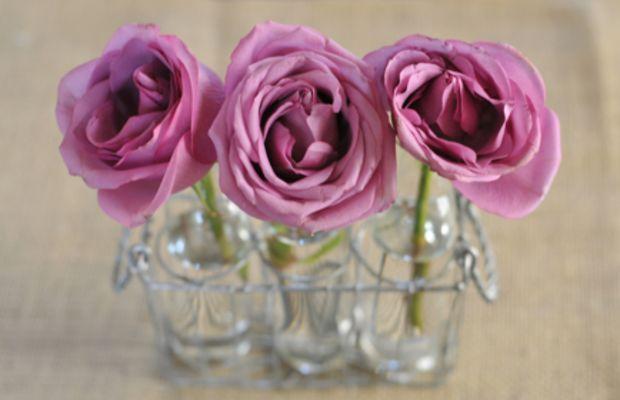 new-vase