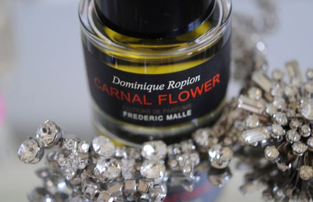 carnal-flower