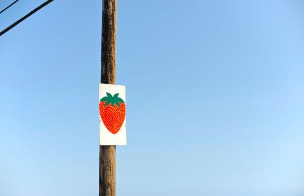 strawberry%252520sign