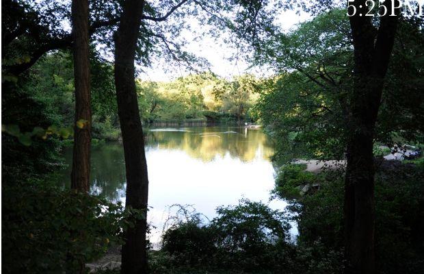 {Quick walk through Central Park at dusk}