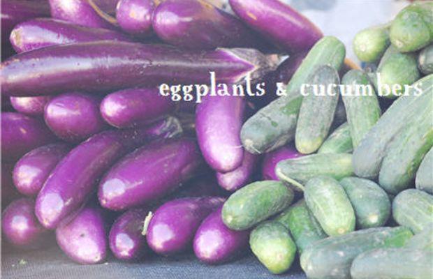 fall-produce6