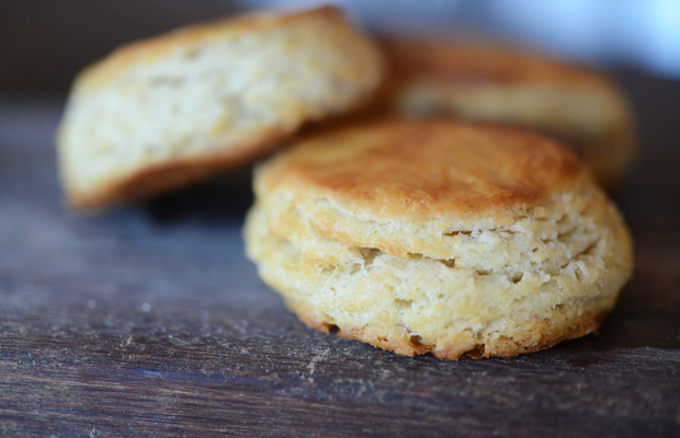 biscuit11