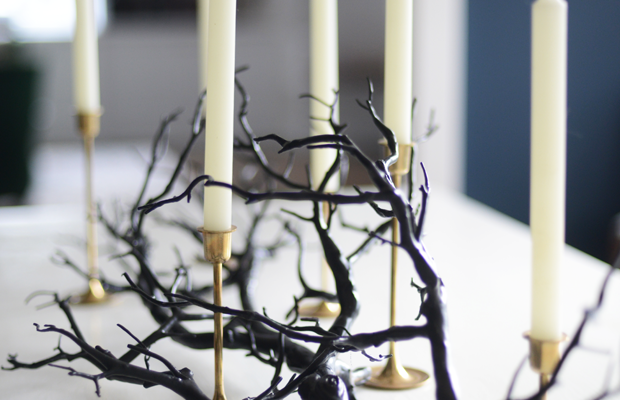 {Branch with candles on the dining room table}
