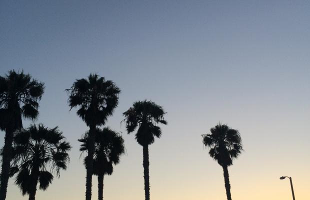 {Boardwalk sunset}
