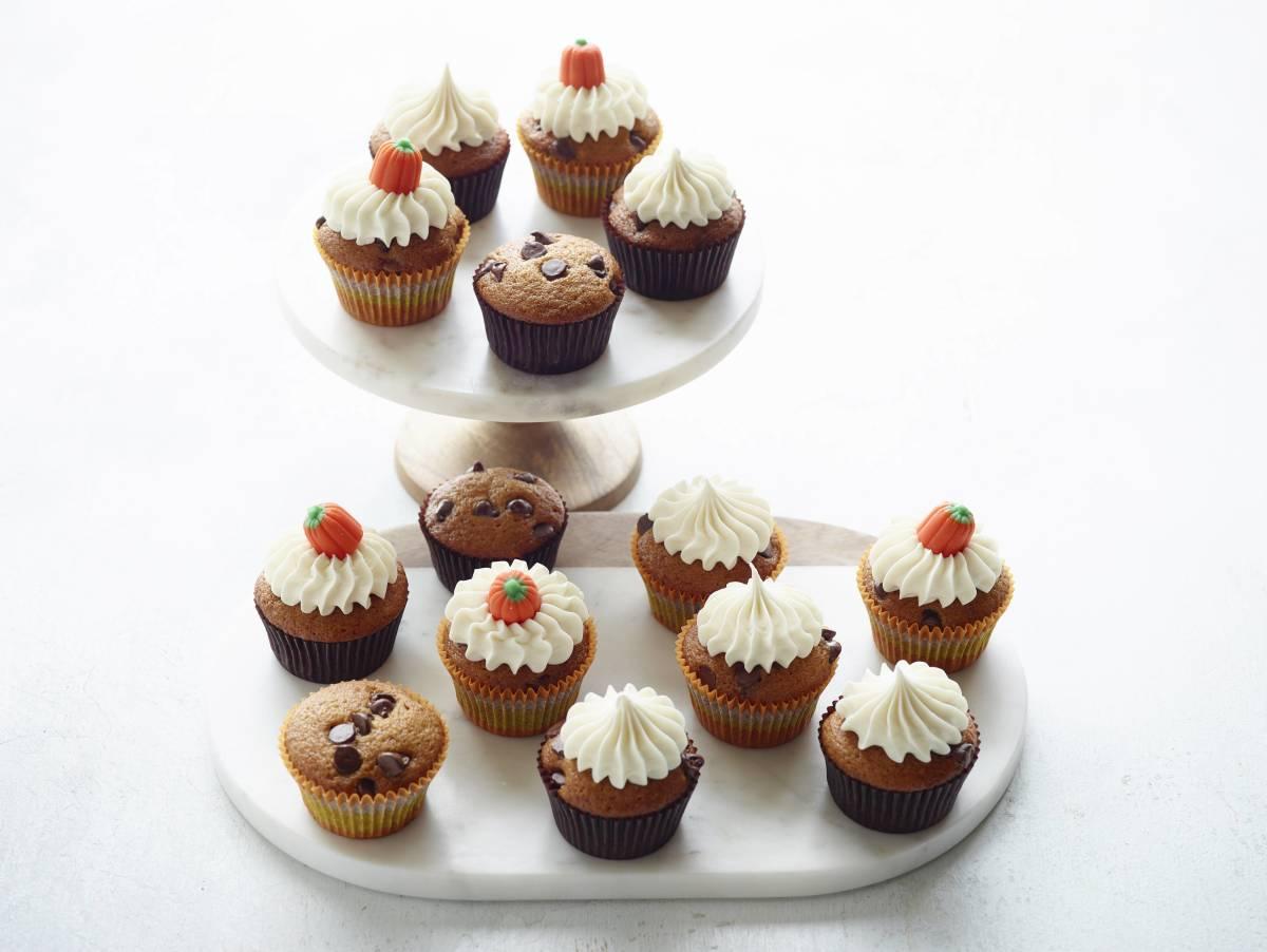 pumpkin chocolate chip cupcake final
