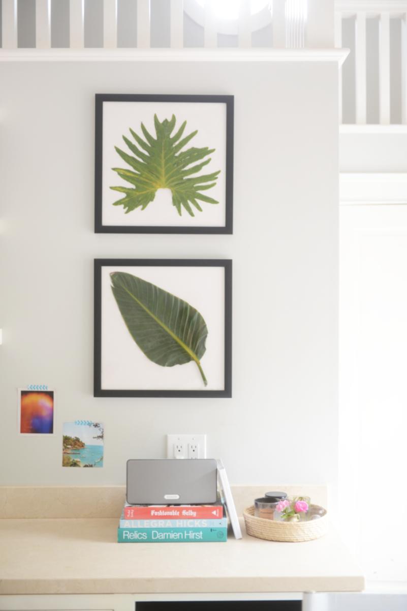framed leaf.png
