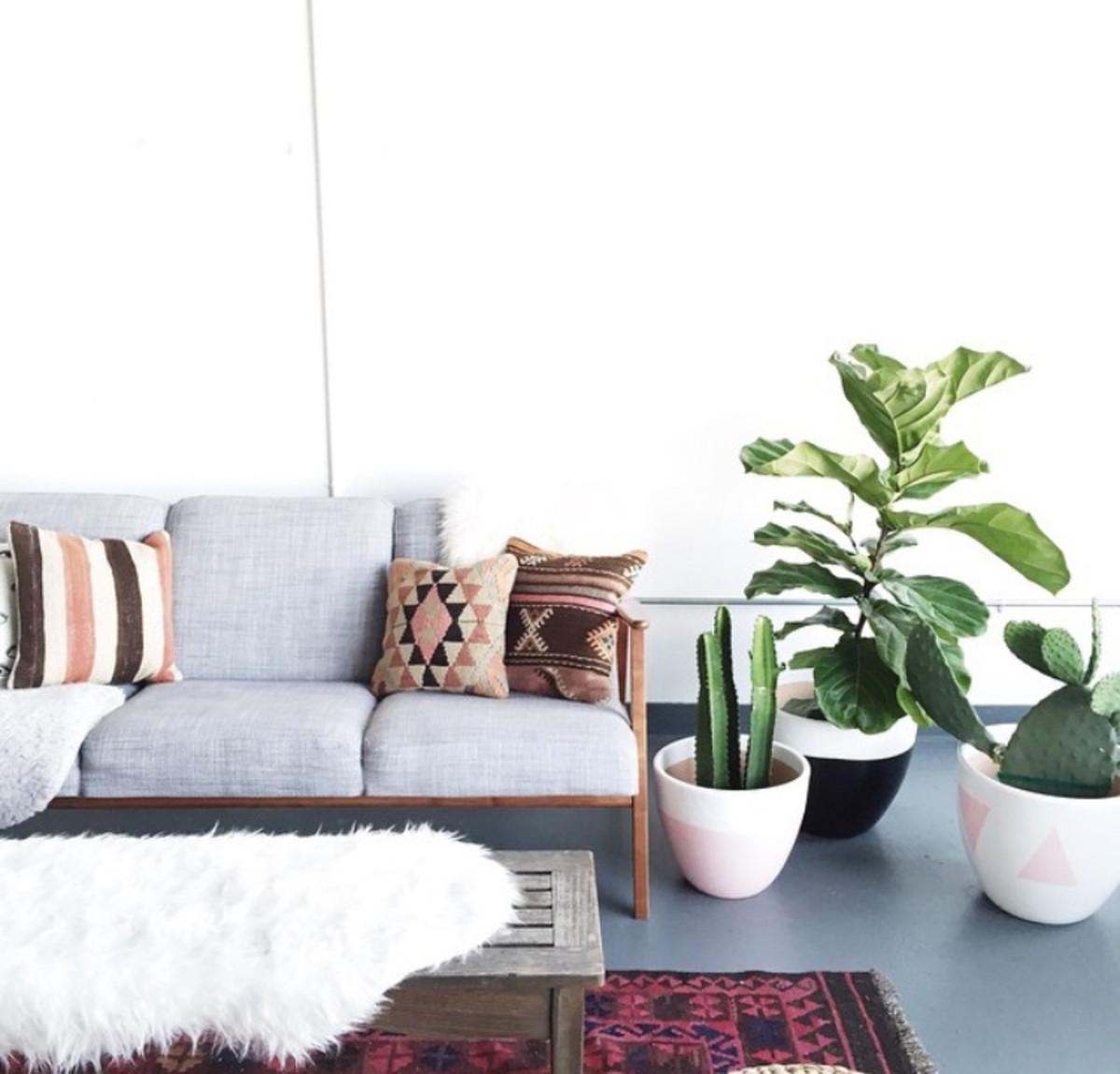 sofaplants.jpg