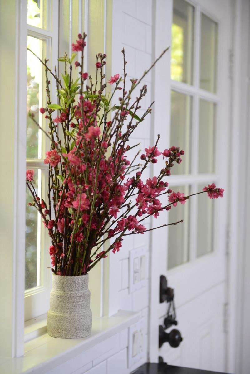 {Cherry blossoms that brighten up a kitchen window}