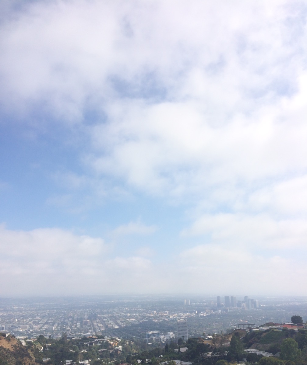 5 Things LA Skyline