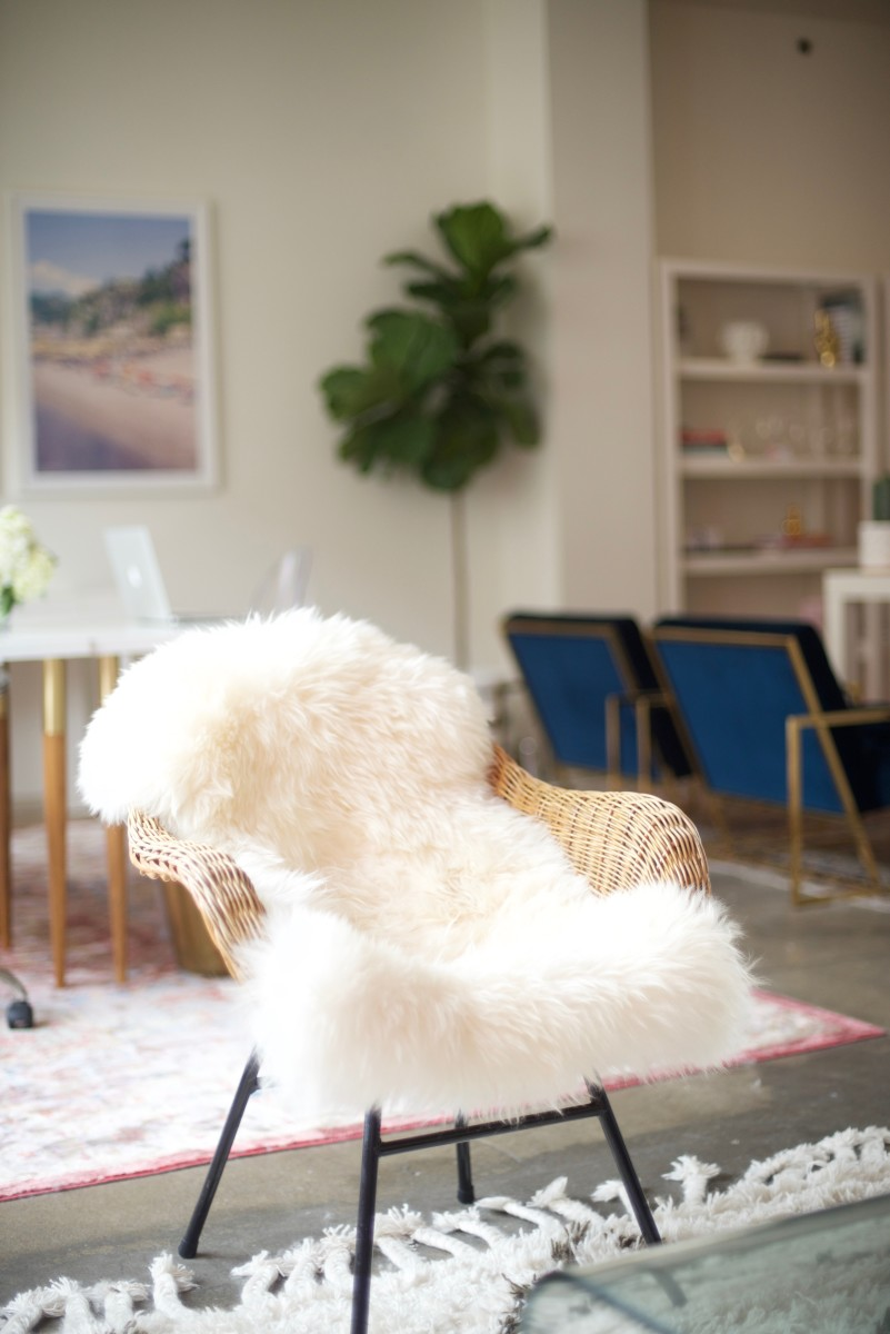 Office Reveal_Sheepskin Chair 2.jpg