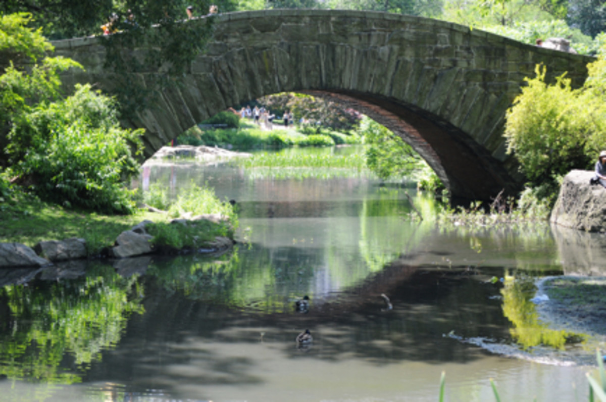{Central Park never ceases to amaze me. The last time I went (here), it was covered in snow.}