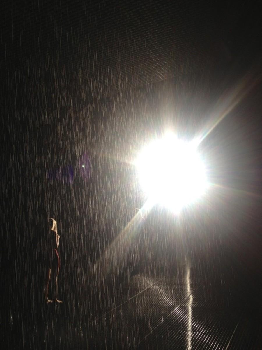 rain-exhibit