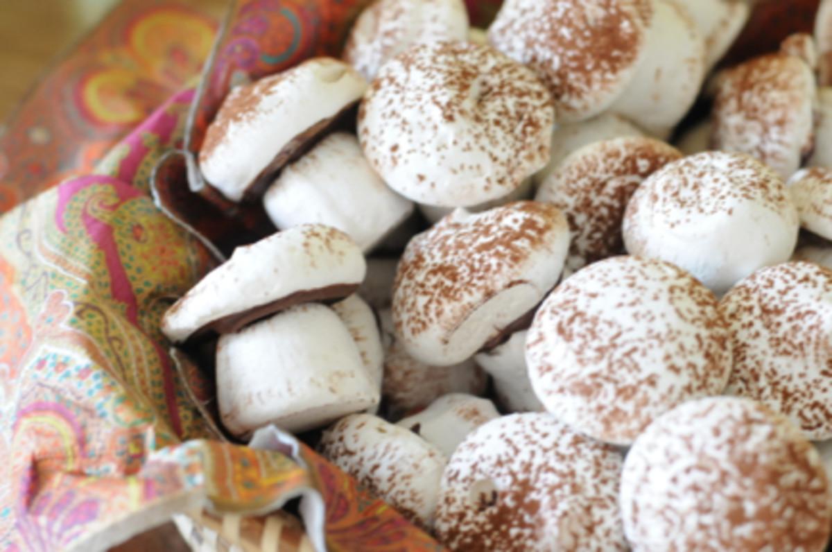{My mom's chocolate meringue mushrooms}