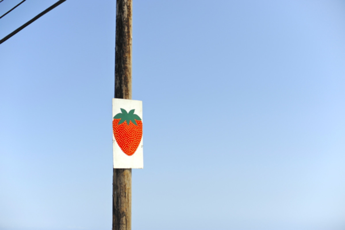 strawberry%252520sign