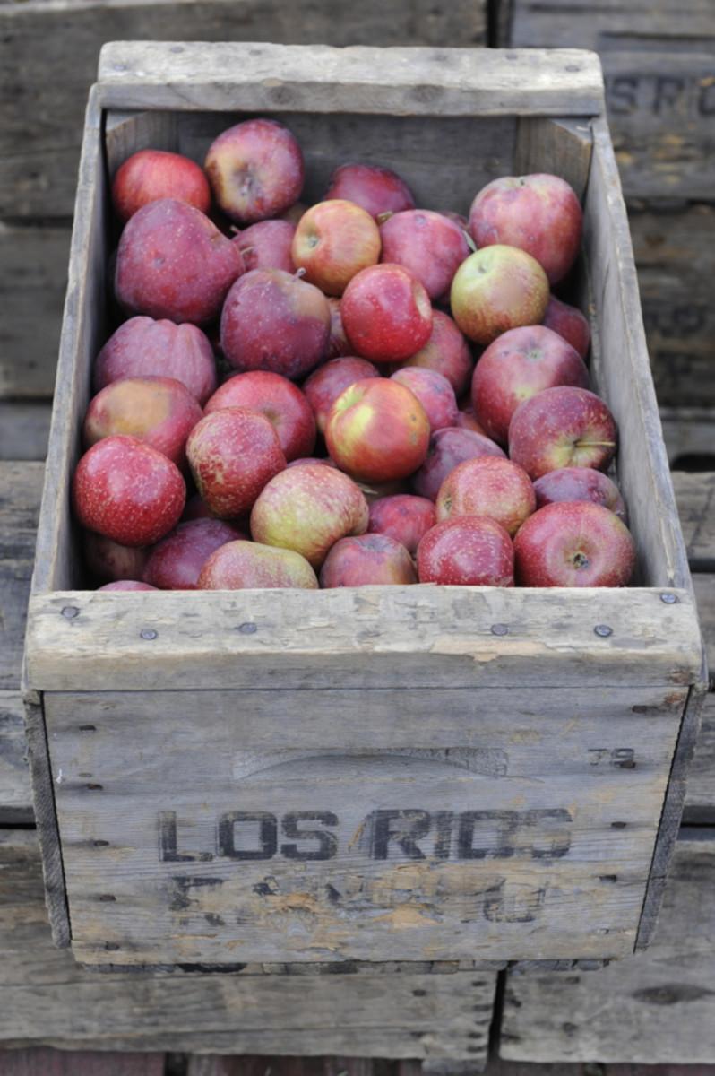 apple112