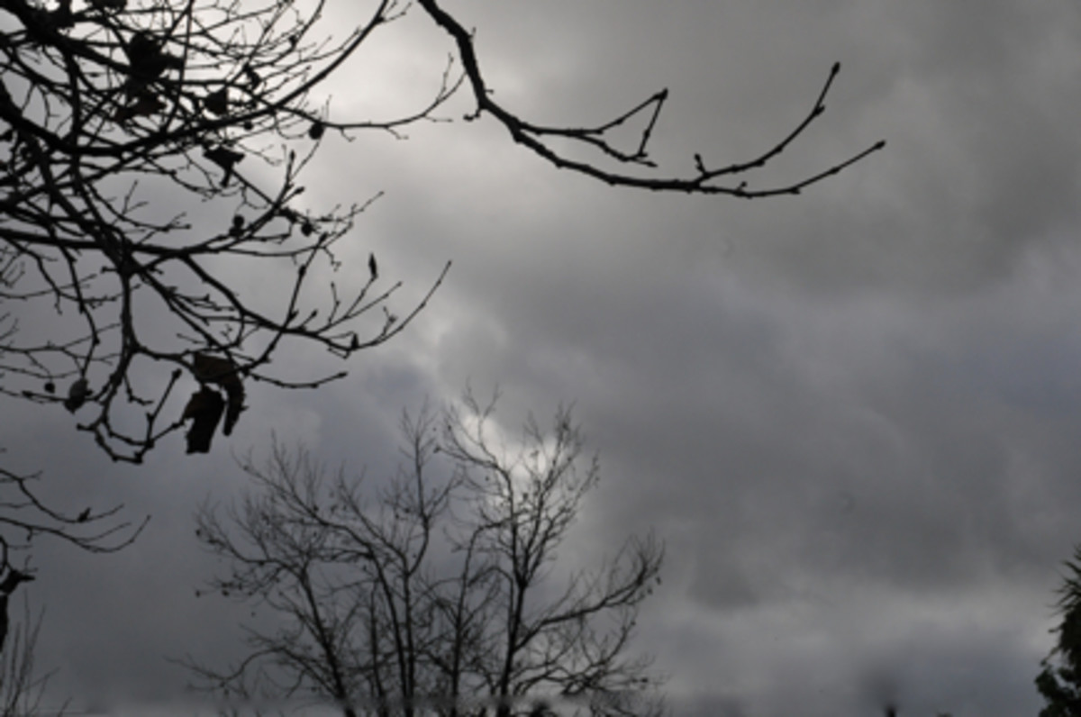 gray-skies2