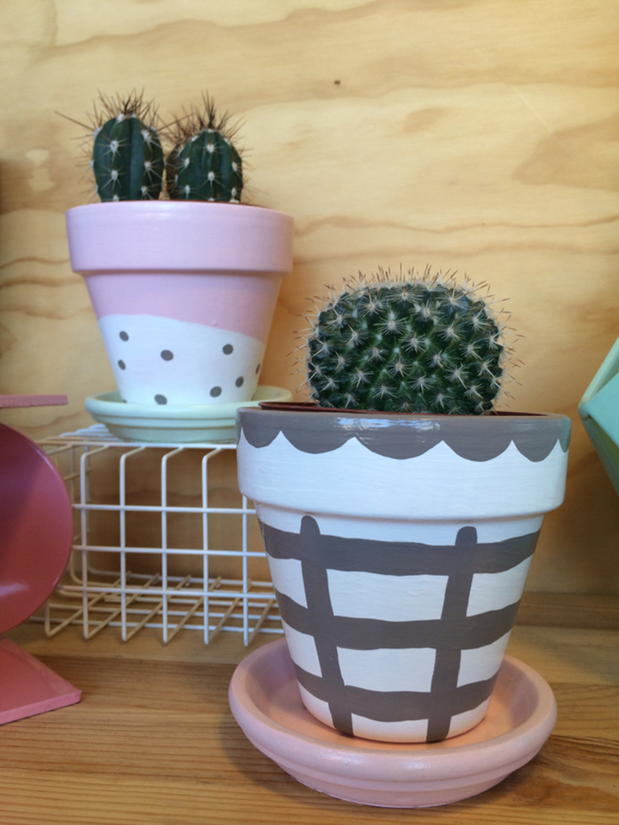 {Cute idea for painting terracotta pots for cacti}