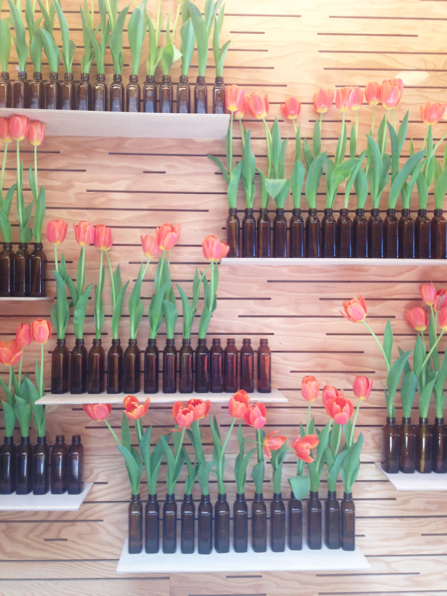 {Tulip and bottle display at the Aēsop store}