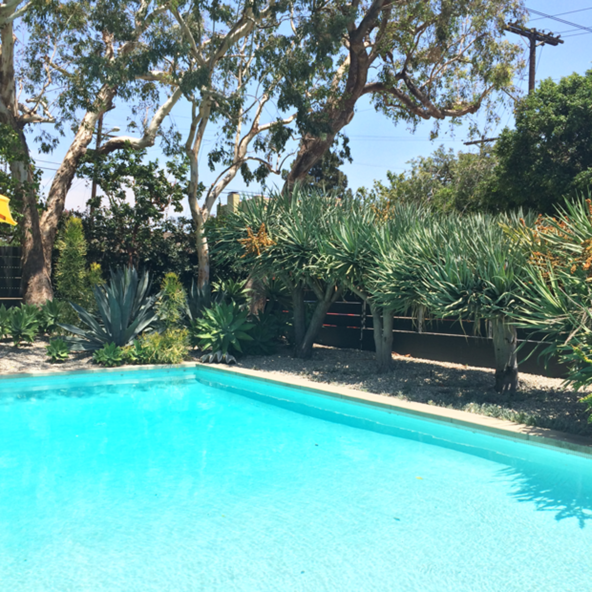 {Quintessential California pool at an event at Trina Turk's house}