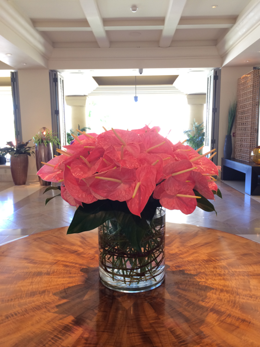 {Flowers in the lobby}