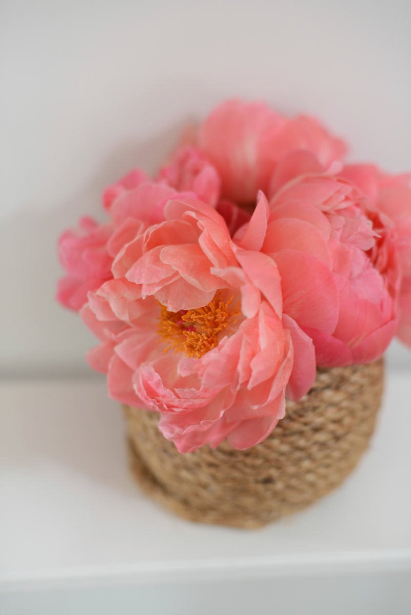 {Peonies in the perfect shade}