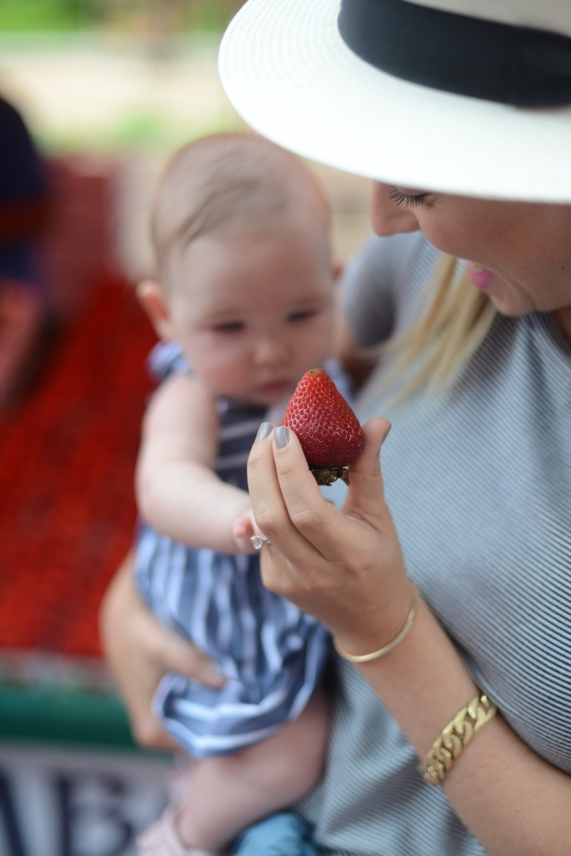 Teaching Sloan how to pick the best strawberries of the season.