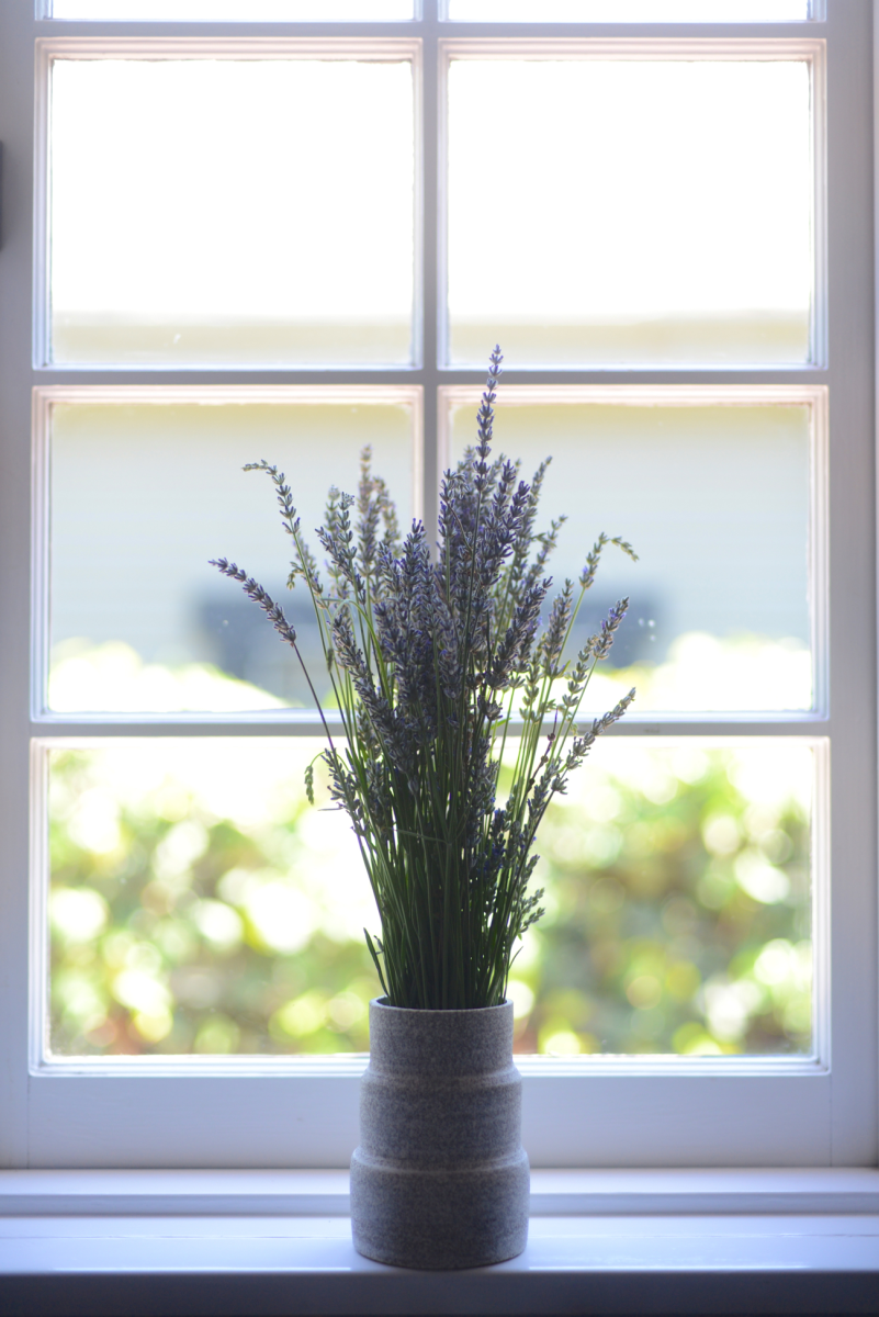 {Lavender in the window}
