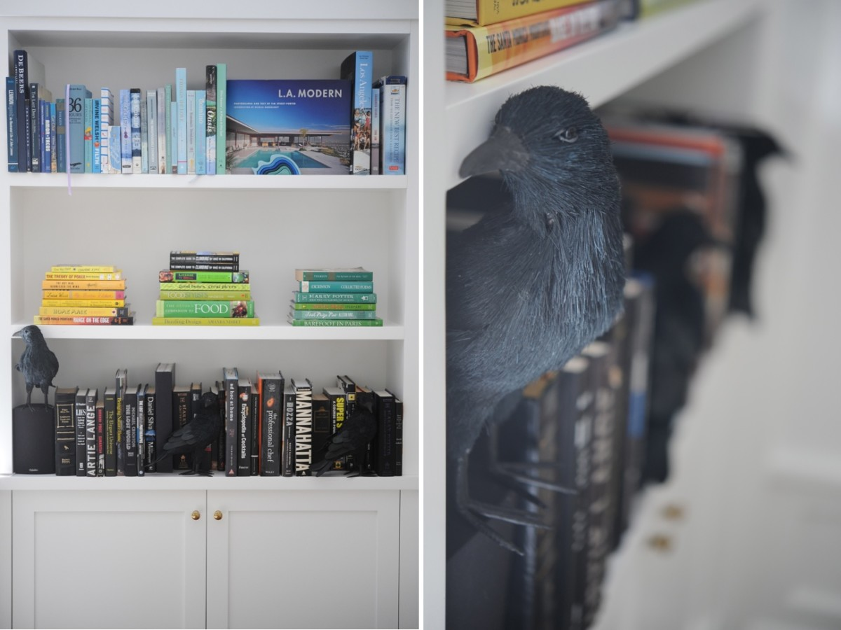 {Crows that blend into the bookshelves}