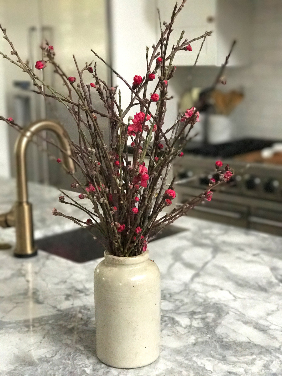 {Flowers starting to bloom on branches in the kitchen}