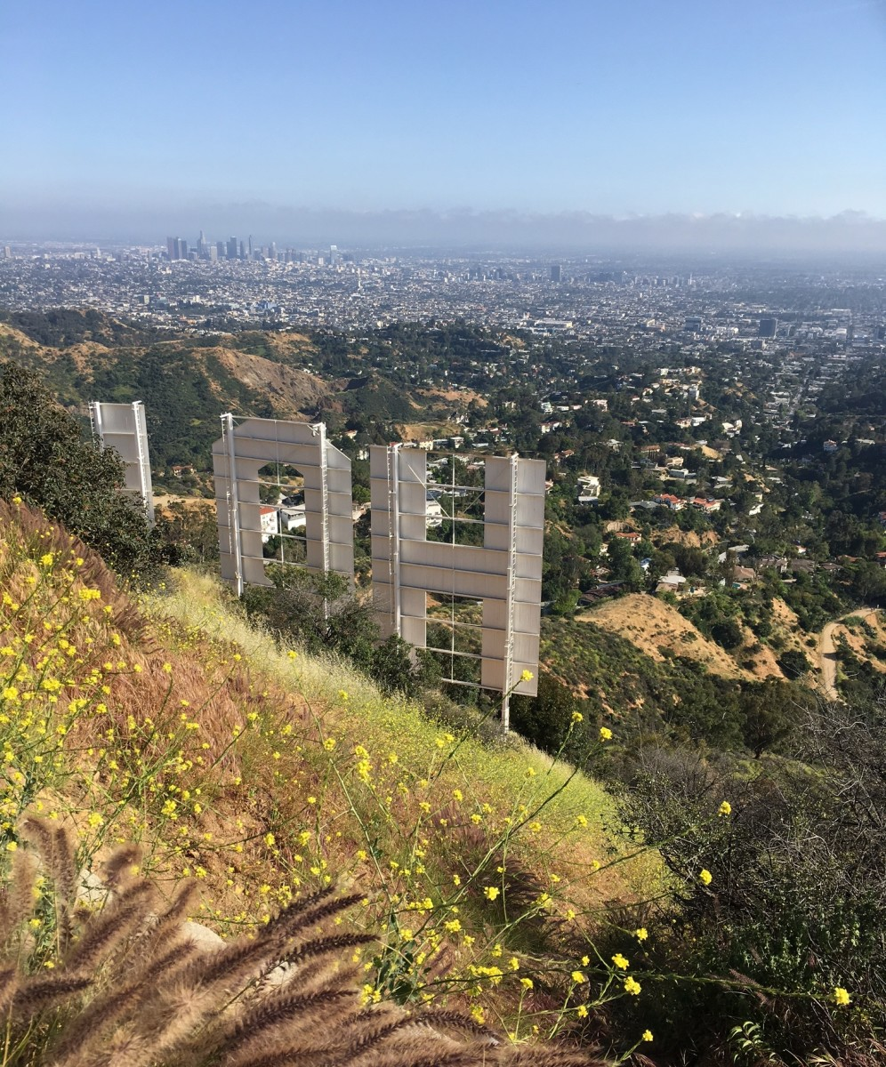 {Timed this hike perfectly to catch L.A. on a rare non-smoggy day.}