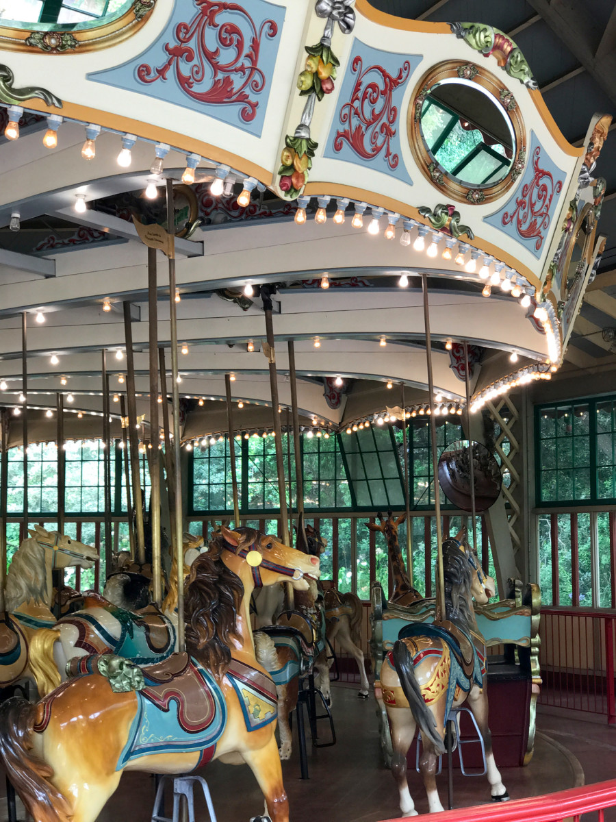 {My first carousel at the San Francisco Zoo, which Sloan approved of as well}