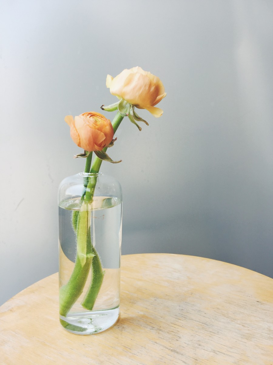 The 5 vases you need for having fresh flowers cupcakes cashmere i love a bud vase its an easy way to bring some life to a room and you dont have to be a florist to create something truly beautiful reviewsmspy