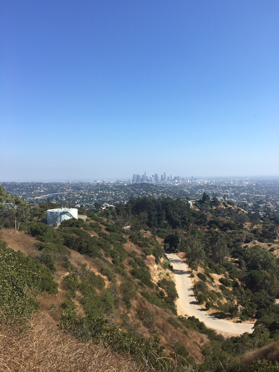 {A very L.A. hiking view}