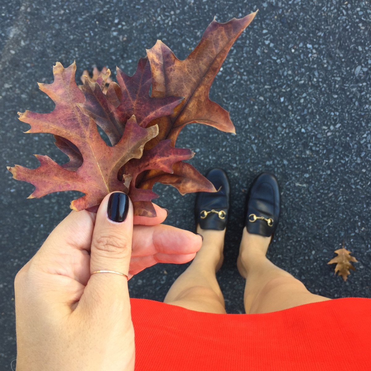 {Evidence that it's almost fall}