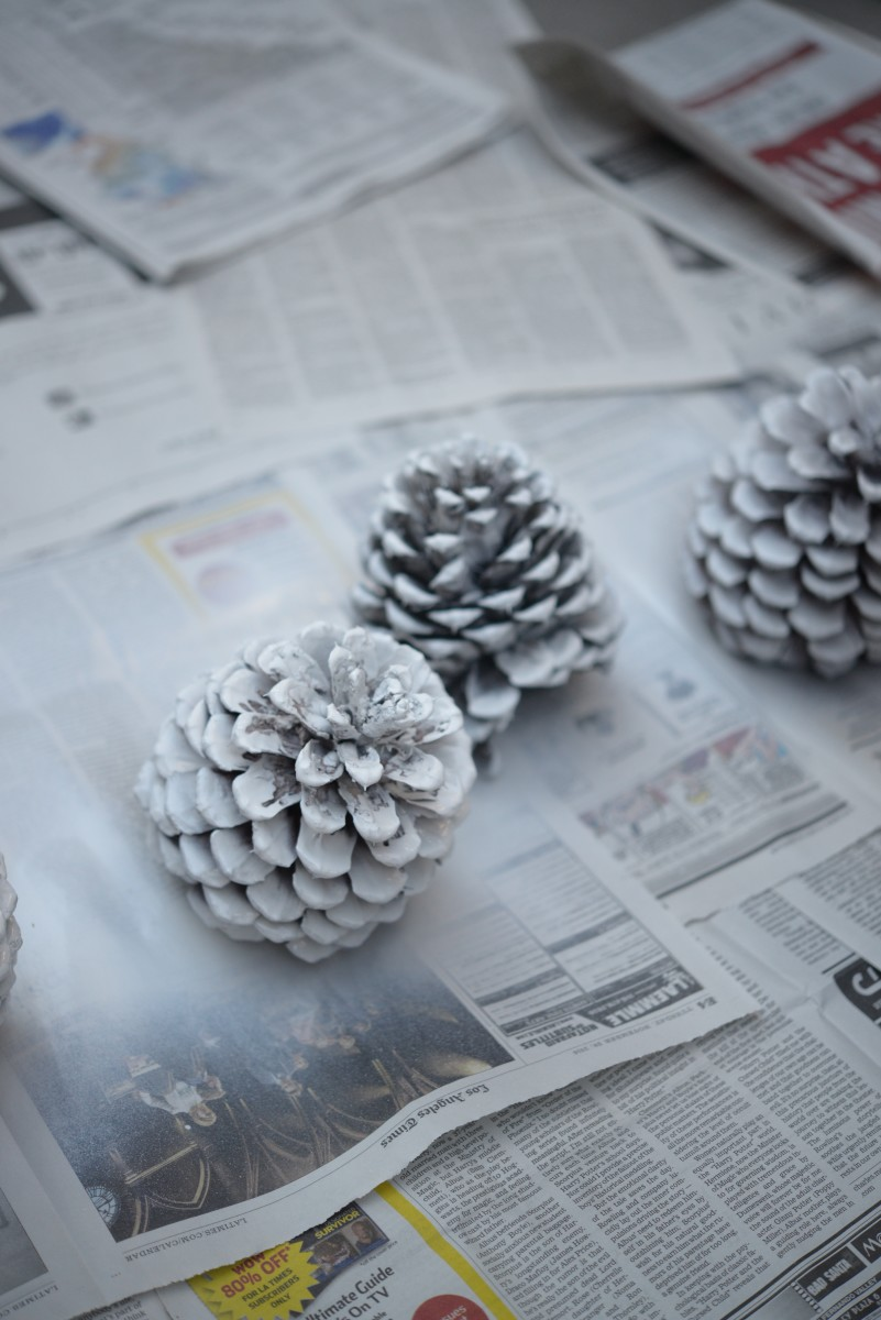 Pinecone DIY6.jpg