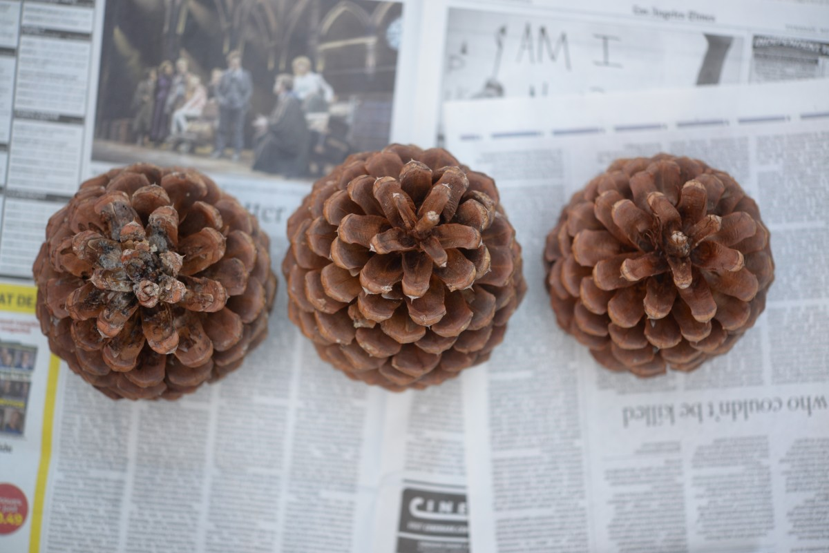 Pinecone DIY2.jpg