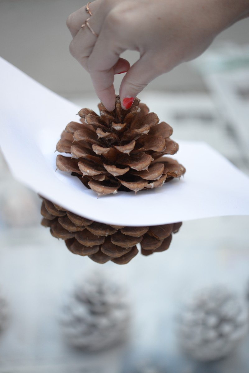 Pinecone DIY7.jpg