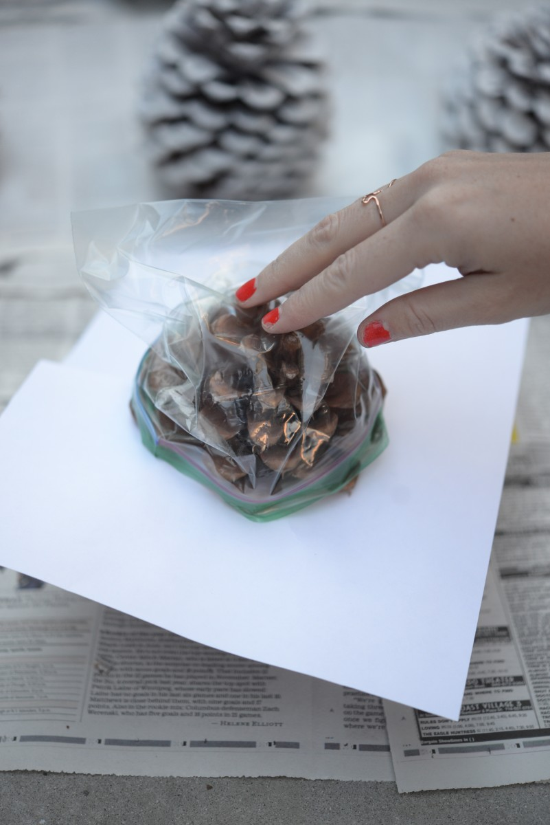 Pinecone DIY8.jpg