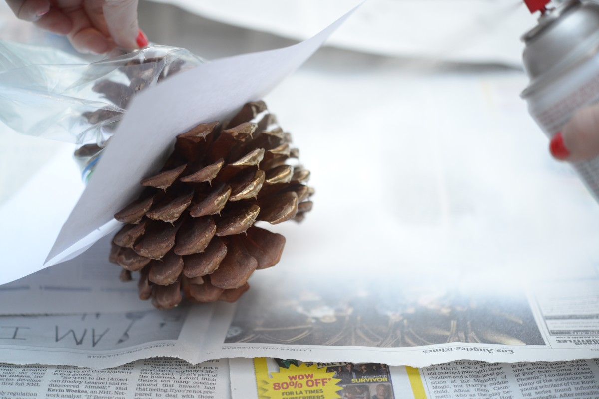 Pinecone DIY10.jpg