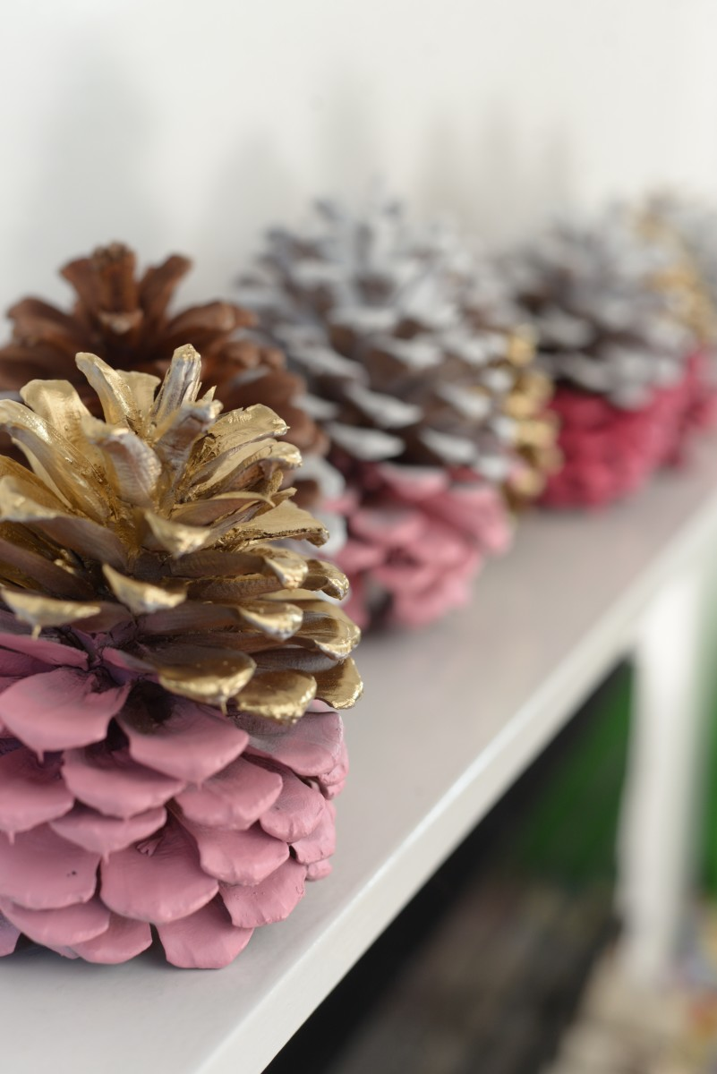 Pinecone DIY20.jpg