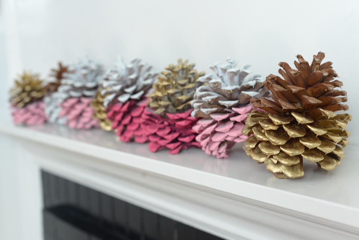 Pinecone DIY28.jpg